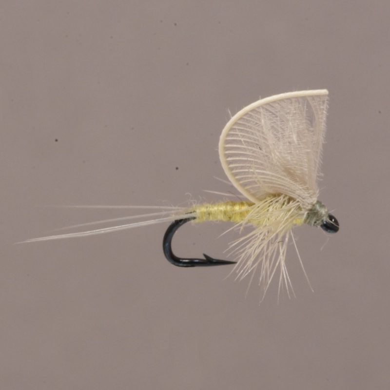 stealth Hackle Wing Mayfly PMD Size 16
