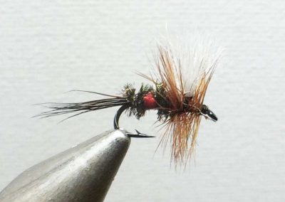Anthony Rowley Fly 7