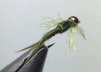 Anthony Rowley fly 6