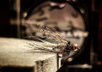 Evan Gazza fly