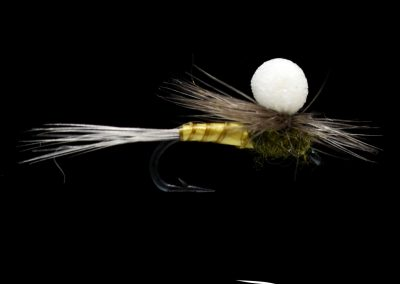 Stealth Foam Parawing, BWO