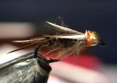 Jeremy Anderson Fly 7