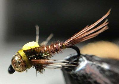 Jeremy Anderson Fly 8