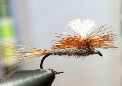Scott Blackhurst Fly 8