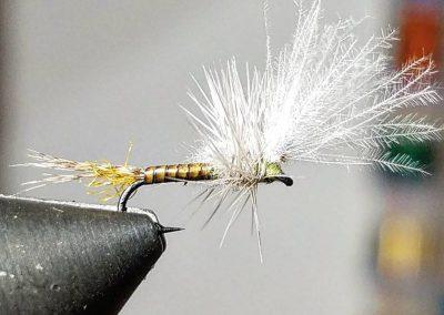 Scott Blackhurst fly 4