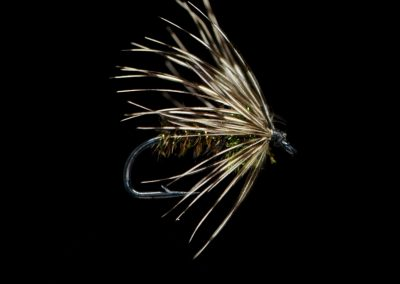 Stealth Soft Hackle Peacock